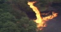 VIDEO: Relámpago provocó un tornado de fuego en la fábrica de Jim Beam