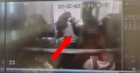 VIDEO: Este hombre aventó a este pobre perro fuera del elevador y se ganó el odio de todo Internet