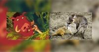 11 famosas escenas de Disney que se hicieron realidad