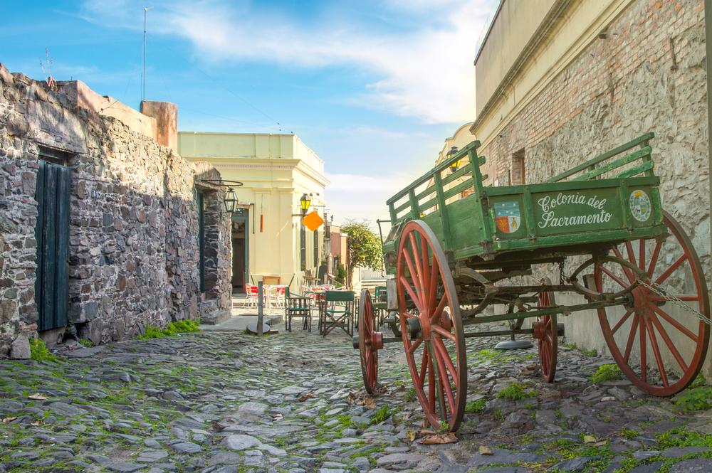 Ksenia Ragozina / Shutterstock.com