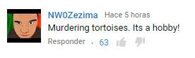 tortuga02