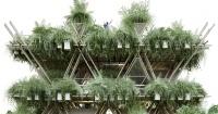 Imagina una eco-ciudad hecha de bambú: pronto será realidad