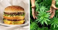 Cuánta marihuana puedes comprar por el precio de un Big Mac en tu país