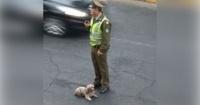 Policía héroe obligó a taxista a llevar al veterinario al perrito que atropelló