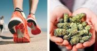 Comprobado: correr tiene los mismos efectos que fumar marihuana