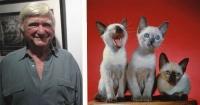 Este fotógrafo se anticipó a la fiebre por los gatos en Internet hace 40 años