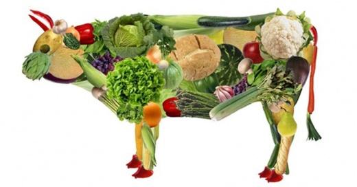 portada-vegetariano