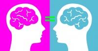 ¡Sorpresa! No hay ninguna diferencia entre los cerebros masculino y femenino