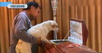 Esta mujer adoptó 58 perros de la calle y todos la acompañaron en su funeral
