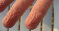 Tus dedos se arrugan cuando están en el agua por una gran razón
