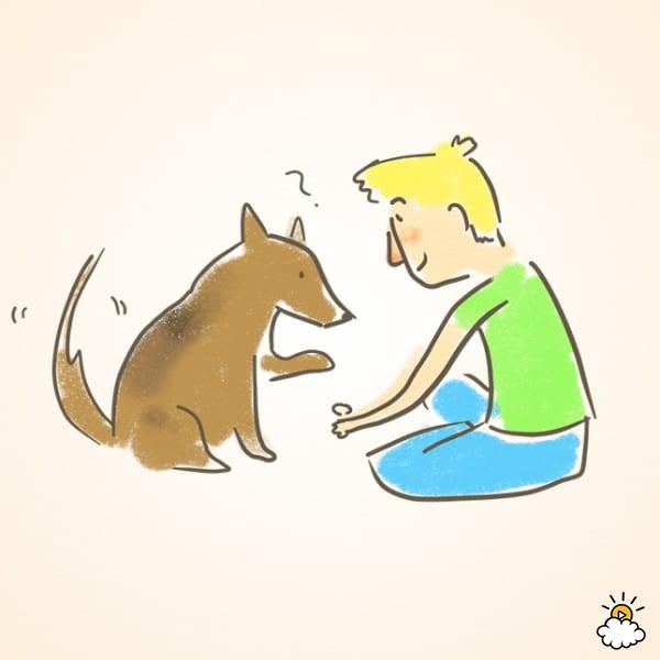 Con una deliciosa recompensa en la mano, cerca del suelo. Cuando tu perro levante su mano para tratar de sacarla, dásela de recompensa. Repite esto muchas veces.