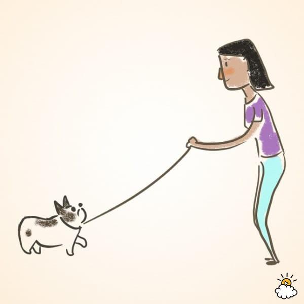 """Ponle una correa corta a tu perro y mientras lo atraes hacia ti di """"ven"""""""