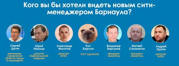 EL gato Barsik, junto a los otros candidatos