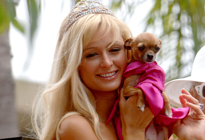 Paris Hilton y su mascota