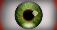 ¡Advertencia! Este video causa alucinaciones a quienes lo ven, ¿te atreves a probarlo?