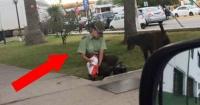 La policía que alimenta a perros callejeros todos los días y que se volvió viral