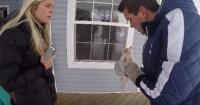 A este gatito lo encontraron casi congelado y lo que hicieron es para aplaudirlos