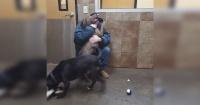 Tuvo un infarto y le quitaron a sus dos amados perros hasta que algo increíble sucedió
