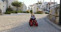 Gracias a esta hermosa silla de ruedas, Henry puede hacer una vida normal