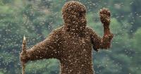 Estos hombres deben estar inmóviles durante una hora mientras su cuerpo está repleto de abejas