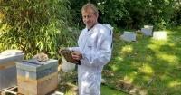 Entrenó a sus abejas para que hagan miel de marihuana