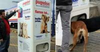 Esta máquina entrega comida a perros callejeros si depositas una botella plástica