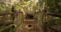 Las escalofriantes fotos de este parque acuático abandonado de Disney no te dejarán dormir
