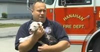 Lo salvaron de un incendio con su cuerpo quemado, lo abandonaron y su historia no terminó ahí