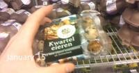 Compró huevos de codorniz en el supermercado y algo increíble pasó 30 días después