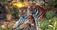El desafío de los 16 tigres ocultos que nadie puede resolver