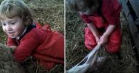 ¡Impresionante! Niña de 3 años ayuda a dar a luz a una oveja