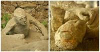 Lo que estos arqueólogos encontraron en Pompeya te pondrá los pelos de punta