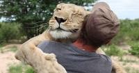 Después de ver esto te darás cuenta de que los animales sí tienen sentimientos