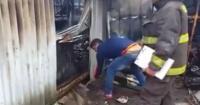 Escucharon ruidos bajo la tierra tras un incendio y lo que encontraron es increíble