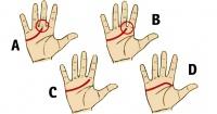La línea de la vida de tus manos revelan más de lo que imaginas sobre tu personalidad