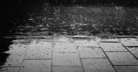 Así se llama el olor que sale del suelo después de la lluvia