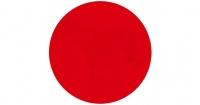 ¿Logras ver lo que hay dentro del círculo rojo? La ilusión óptica que tiene a todos intrigados