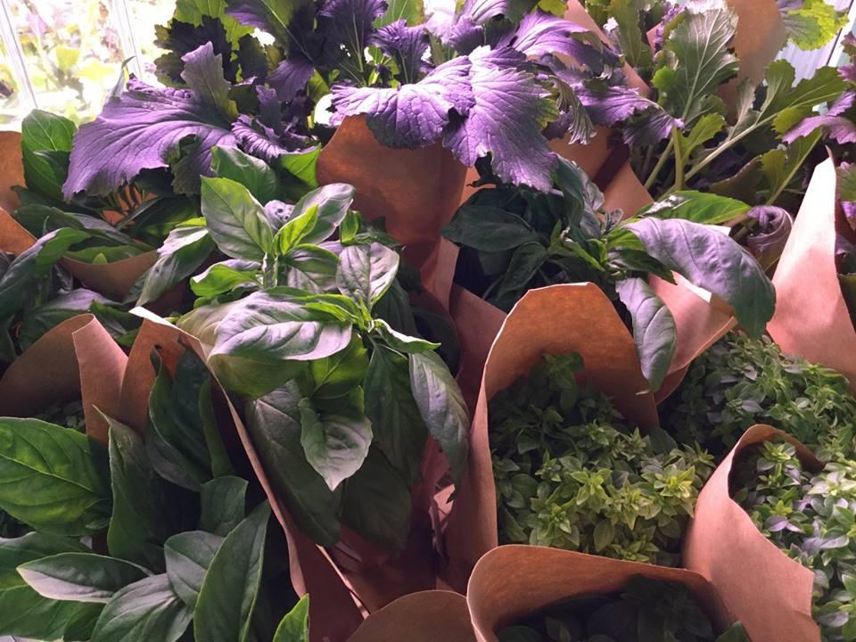 Verduras en bolsas