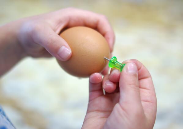 Huevo clavado por un pin