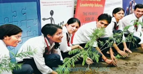Estudiantes plantando árboles