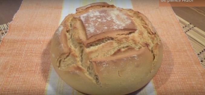 Pan listo para comer