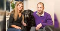 Le dio un paro cardíaco y lo que hizo su perro fue simplemente IMPRESIONANTE