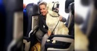Estas aerolíneas rompieron sus propias reglas para que mascotas pudieran escapar de un gigantesco incendio