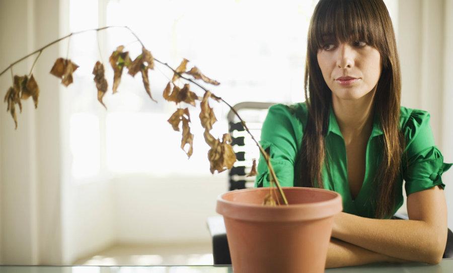 Mujer viendo un macetero con plantas secas