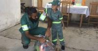 Tiene sólo 5 años y gracias a los recolectores de basura de su barrio cumplió un sueño