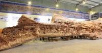 Dedicó cuatro años de su vida a tallar este tronco seco y el resultado es alucinante