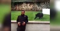 Escalofriante: hombre acechado por una pantera (y no hay muralla de vidrio que lo proteja)