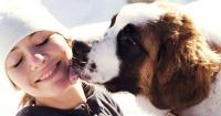 ¿Cómo comenzó la amistad entre los perros y los humanos?