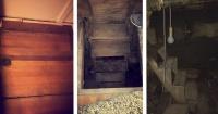 Sacaron la alfombra del piso, vieron una entrada secreta al sótano y no creerás el tesoro que encontraron