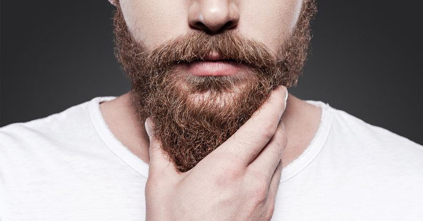 portada-barba
